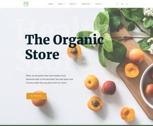 Organic food store website